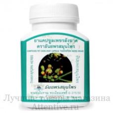 Капсулы тайские от варикоза, геморроя Thanyaporn Herbs Pet Sang Khat Capsules, 100 шт.