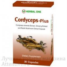 Кордицепс Плюс, Cordyceps Plus, 30 капсул.